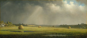 Hay Wagon Prints - Newburyport Meadows Print by Martin Heade