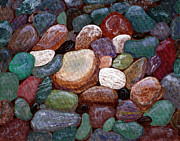 Newfoundland Art Paintings - Newfoundland Beach Rocks 2  by Barbara Griffin