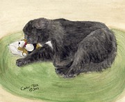 Newfoundland Art Paintings - Newfoundland Dog Naptime Cathy Peek Animal Pets Art by Cathy Peek