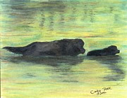 Dog Swimming Paintings - Newfoundland Dog Puppy Swim Cathy Peek Animal Art by Cathy Peek