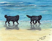 Newfoundland Art Paintings - Newfoundland Dogs Beach Walk Cathy Peek Art by Cathy Peek
