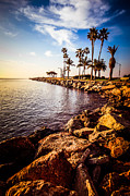 Jetty View Park Prints - Newport Beach Jetty Picture at Jetty View Park Print by Paul Velgos