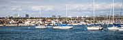 Southern Homes Prints - Newport Beach Panorama Print by Paul Velgos