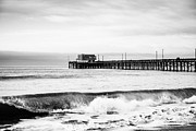 Orange Photos - Newport Beach Pier by Paul Velgos