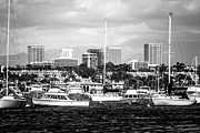 Southern Buildings Posters - Newport Beach Skyline Black and White Picture Poster by Paul Velgos