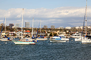 Southern Homes Prints - Newport Beach Skyline in Orange County California Print by Paul Velgos