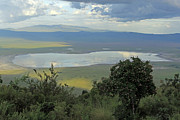 Reflections In Water Prints - Ngorongoro Crater Print by Tony Murtagh