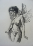Nude Drawings - Night Angel by Ray Agius