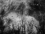 Gothicolors Donna Snyder - Night Flight