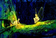 Fairies Art - Night in the Cove by Tom Straub