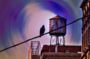 Watertower Prints - Night Life Print by Bill Cannon