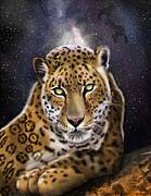 Thomas J Herring - Four Big Cat Series...