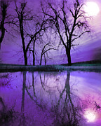 Gina Signore - Night sky in purple