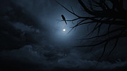 Spooky  Digital Art Originals - Night sky  on Halloween. by Apichart Meesri