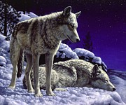 Wolves Painting Prints - Night Watch Print by Crista Forest