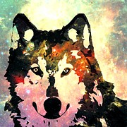Wild Animals Mixed Media Posters - Night Wolf Poster by Anastasiya Malakhova