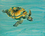 Hawaii Sea Turtle Paintings - Niks Turtle by Emily Brantley