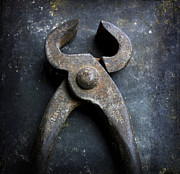 Rust Metal Prints - Nippers Metal Print by Bernard Jaubert