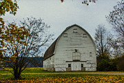 Large Format Digital Art Prints - Nisqually Barn Print by Barry Jones