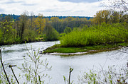 Roger Reeves  - Nisqually River from the...