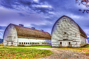 Barry Jones Metal Prints - Nisqually Twin Barns Metal Print by Barry Jones