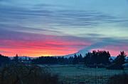 Dawn - Nisqually Valley Dawn by Sean Griffin