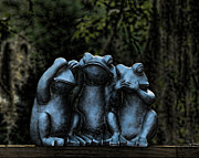 Hear No Evil Framed Prints - No Evil Frogs in Moonlight Framed Print by Will Abair