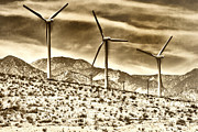 Featured Artist Metal Prints - NO PLACE LIKE HOME 3 Palm Springs Metal Print by William Dey