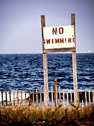 Beautiful Words Posters - No Swimming Poster by Colleen Kammerer