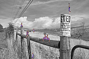Powerline Prints - No Trespassing Print by Betsy A Cutler East Coast Barrier Islands