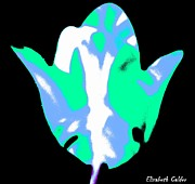 White And Blue Posters Mixed Media - No.8 Floral Pop Art Tulip Collection by Eliz Calder