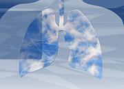 Monica Schroeder - Non-Polluted Lungs
