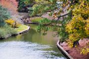 Norfolk Botanical Gardens Canal 7 Print by Lanjee Chee