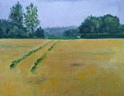 Nancy Van den Boom - Norfolk Golden Fields...