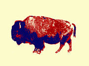 Bison Digital Art - North American Treasure by Jacqueline Barden