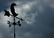 Weathervane Prints - North By Northwest Print by Anthony Thomas