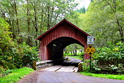 North Fork Prints - North Fork Yachats Covered Bridge Print by Ansel Price