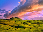 Kamuela Paintings - North Kohala Ranch at Sunset by Dominic Piperata
