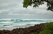 Charmian Vistaunet - North Shore Waves