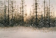 Inhospitable Framed Prints - Norther Bush-Country Framed Print by Conrad Mieschke