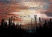 Canadian Geese Pastels - Northern Lake Activity by R Kyllo