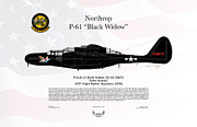 Fighter-bomber Framed Prints - Northrop P-61 Black Widow Framed Print by Arthur Eggers