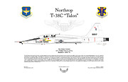 12th Air Force Prints - Northrop T-38C Talon The White Rocket Print by Arthur Eggers
