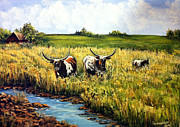 Longhorn Originals - Nosy Girls by Julie Townsend