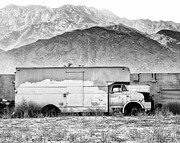 Not In Service Photos - NOT IN SERVICE BW Palm Springs by William Dey