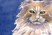 Paw Paintings - Not Too Happy by Marsha Elliott