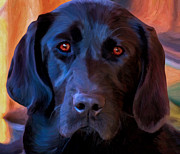 Black Lab Photos - Nothing But Love by Michael Pickett