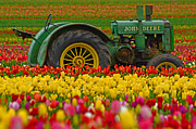 Boren Framed Prints - Nothing Runs Like A Deere Framed Print by Nick  Boren