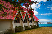 Jenny Rainbow - Notre Dame Auxiliatrice. Mauritius