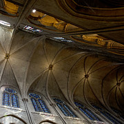 Medieval Temple Posters - Notre Dame Ceiling in Gold Poster by Evie Carrier